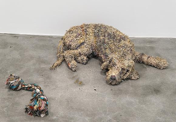 Will Kurtz, Sleepy Agnes, 2013