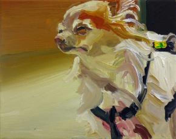 Windhund © Hannelore Kroll