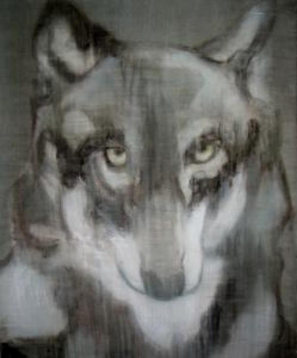 Wolf, 2010 © Tine Schumann